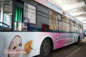 Trollejbus2-300x199